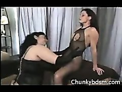Chubby Fishnet Domination