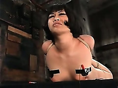 Dragonlily BDSM 3 with Princess Donna