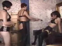 Two dominatrix babes with a latex girl