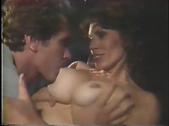 Hairy cunt sex in hot retro with cumshot