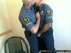 Hot daddy bear cops hairy body nasty licking adventure