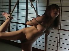 Cute japanese babe is tied up naked