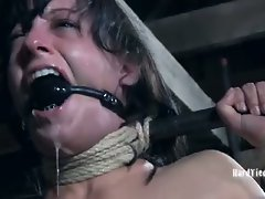 PD wanted his cock sucked and he wanted it done well, so when Elise...