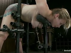 Adrianna Nicole metal-bound in doggy-strappado, fucked by our Alpha...