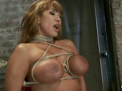 Big titted MILF Ava Devine is bound brutally to a chair and made to...