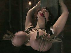 New girl gets her GIANT NATURAL TITS tied up and shocked...