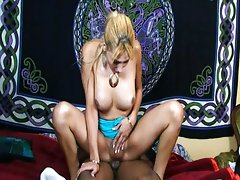 Blond tranny eating pecker with her dirty ass