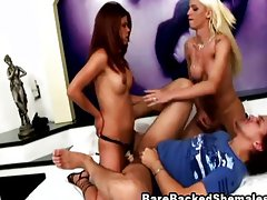 Transsexual screws rough in bareback orgy