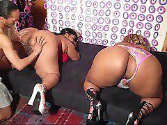 BBW's Madison & Madam Trixie Threesome