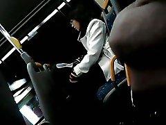 Apolo Flash Bus