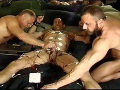 Full body electro, cock, balls, butthole, chest, tits.  Monster Dicked Scott Skinner