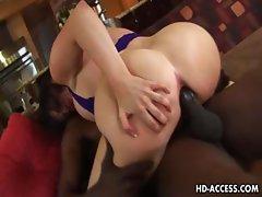Busty whore Daphne Rosen interracial sex!