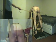 the corporal punishment in the community scheme
