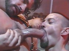 Boys chained dicks are sucked lovingly