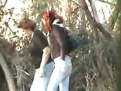 Chicks take a leak among the spy trees