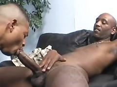 Ebony thugs Ass Professor and Corey Corey fucking