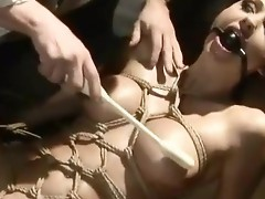 Aletta Ocean having bondaged