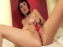 Watch free amateurs girls using big dildos