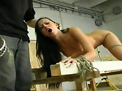 Free whipping spanking torture videos