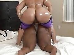 bbw black big butt ass strapon tits