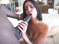 Hung stud Lex Steele gets his huge black pole stuck in a whores mouth