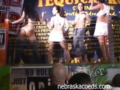 Tequila Frogs Wet T-Shirt Contest for hot crowd