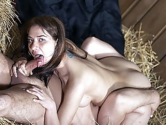 Screwing dick in the stables