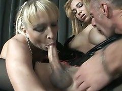 Italian shemale get massive cock sucked