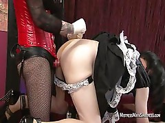 Sissy maid for Mistress Maya Sinstress