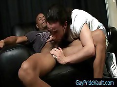 Thug getting his dick sucked by his bitch by gaypridevault