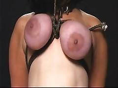 BM-strung up pig