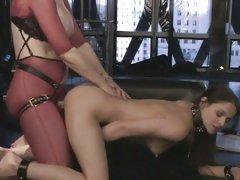 Whore Nina Hartley ruts this bitch up her wet minge