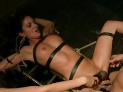 Randy Nikki Daniels is tied up, fucked & pegged