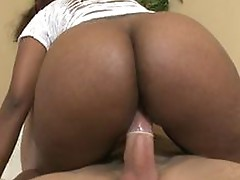 Chris stokes pounding kendal's carribean moist pussy!