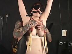 Tit punished