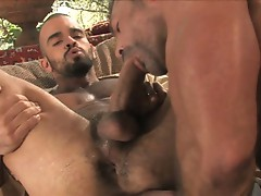 Tales of the arabian nights with horny muscled gay bears huge cocks