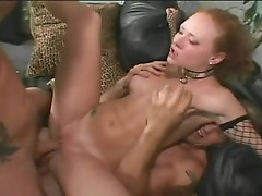 Audrey Hollander can't live without to suck a hard cock as her butt is getting pounded with di