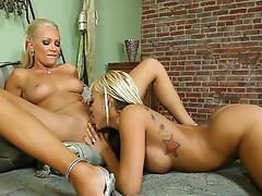 Watch the sexiest xxx wildcat milfs get stroke !