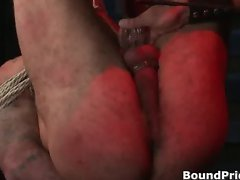 Free extreme gay BDSM videos part2