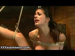 Bound babe pussy clamped and flogged and waxed