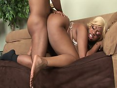 Fat black babe sucking cock and fucked hard