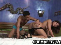 Latina shemale hilda brasil hot blowjob