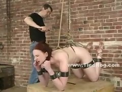 Legs spread wide in bondage torture made to split by ropes