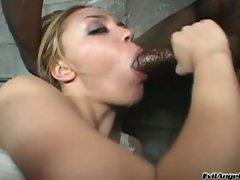 Nasty little ass stuffed with a black dick
