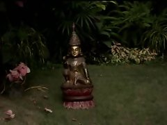 Thai DP 1