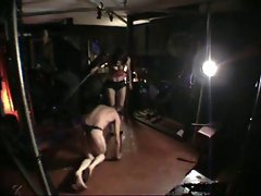 Bullwhipping from bdsmstreak.com