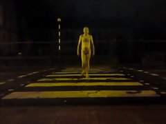 Naked in Public at Night
