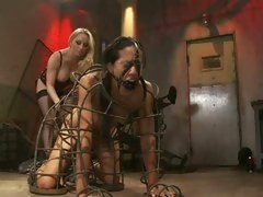 Slut Layla Storm is punished by femdom Aiden Starr