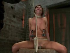 Randy Alexa Nicole gets tied up & tormented