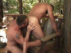 Hairy gay bears sizzling hot ass licking and mouth pounding fun